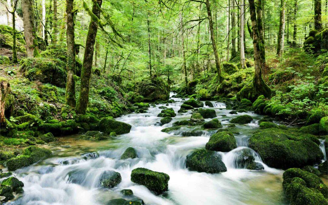 Umweltschutz und Wasser