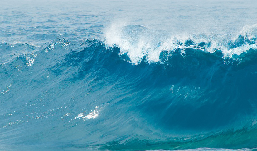 The force of water: Renewable energy from the seas